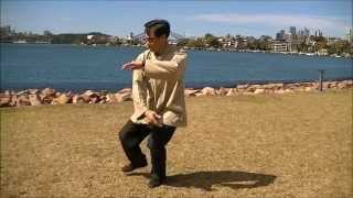 Fu Style Tai Chi Quan 傅式太極拳 3nd Section