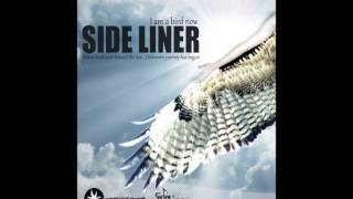 Chill Out: Side Liner - I Am A Bird Now (full album dj mix)