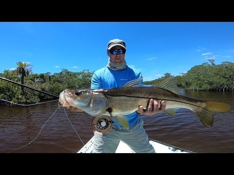 Fly Fishing Everglades Tarpon, Snook And Redfish Flamingo