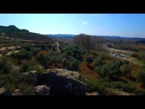 Fincas Maella Simplelifemagalia - Your simple life in Northeast Spain