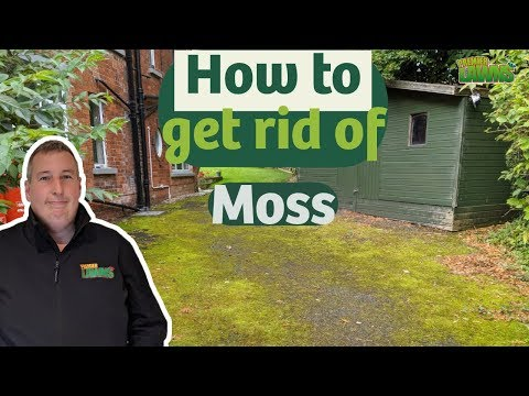 The BEST Way To Clean Moss Off A Tarmac Driveway