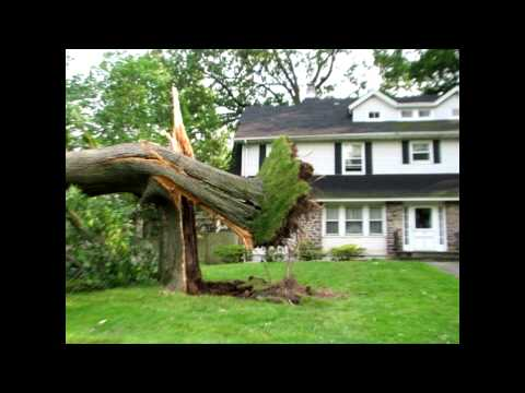 The effect natural disasters has on