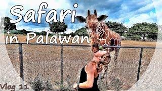 PALAWAN BACKPACKING ADVENTURE [subtitled] - CALAUIT SAFARI PARK WILDLIFE - PHILIPPINEN | VLOG #11