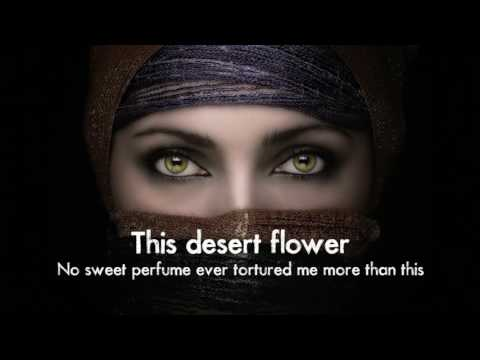 Sting   Desert Rose Lyrics Feat  Cheb Mami Including Arabic Parts