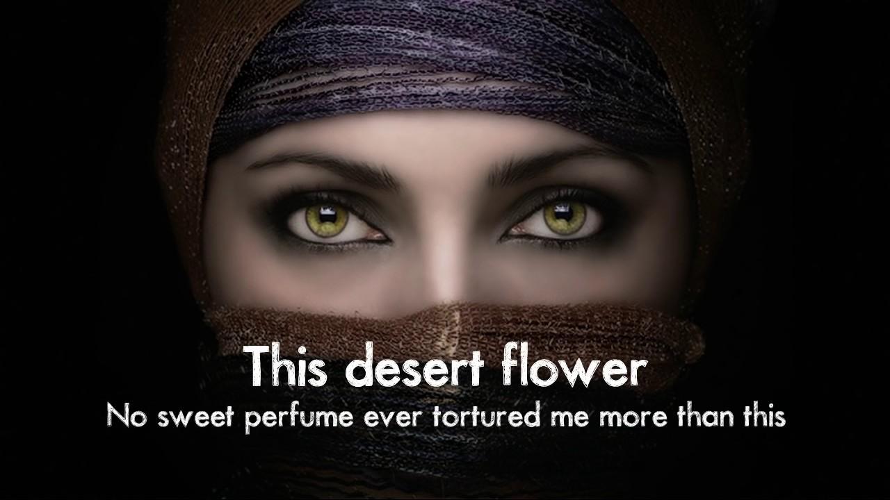 Rose in the desert lyrics