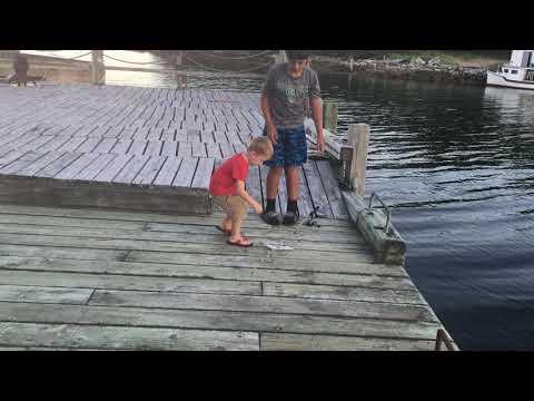 Pier Fishing Nova Scotia