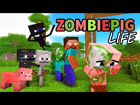Monster School : Enderman's Life Part 5 with ZOMBIE PIGMAN's Life - BEST Minecraft Animation