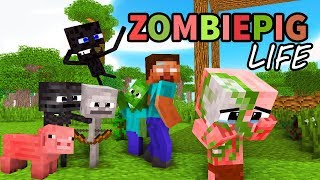 Monster School : Enderman\'s Life Part 5 with ZOMBIE PIGMAN\'s Life - BEST Minecraft Animation