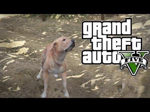 Duh Psa U GTA 5 !!