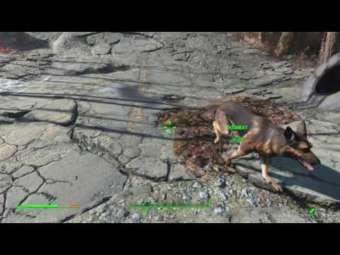 Fallout 4 doghill