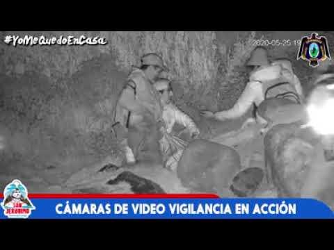 CÁMARA DE VÍDEO VIGILANCIA EN ACCIÓN