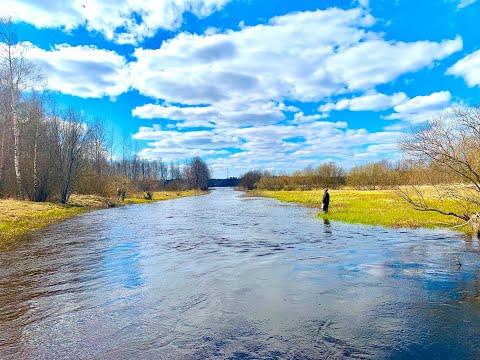 Первая линия озера Правдинское