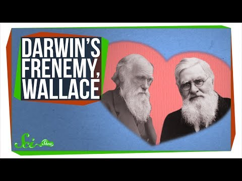 Wallace, Darwin's Forgotten Frenemy