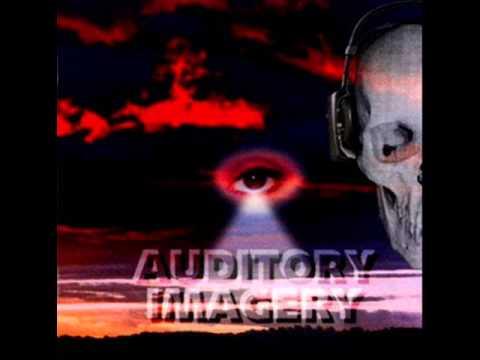 AUDITORY IMAGERY- Reign(Full Album)