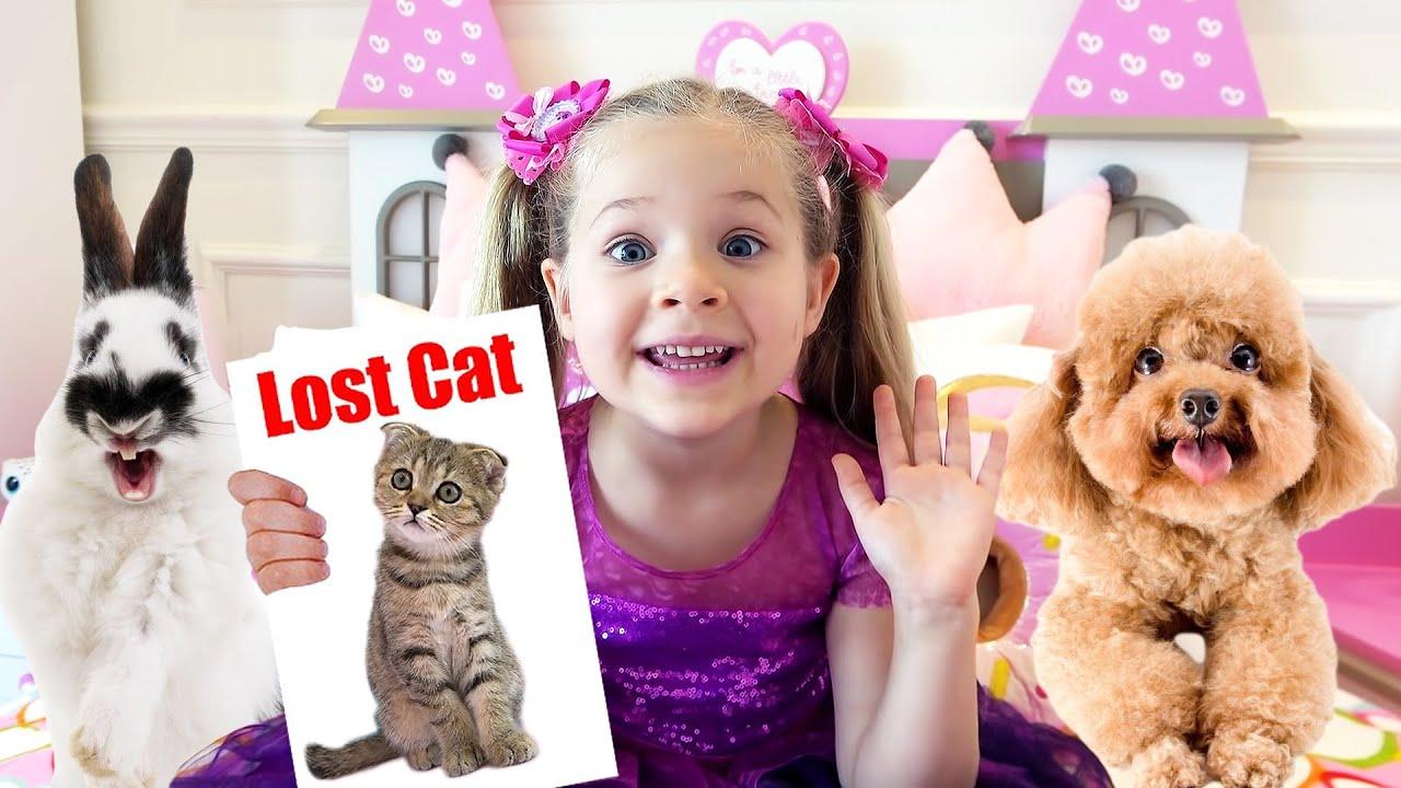 डायना की बिल्ली गई Diana lost her cat