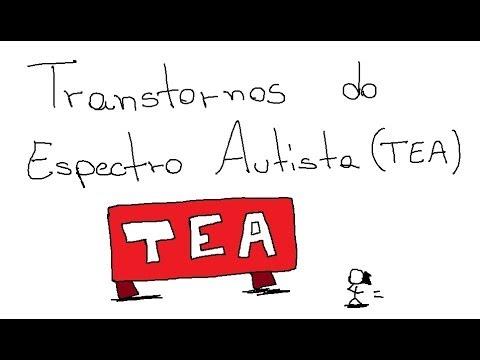 Transtorno do espectro autista dasafios e possibilidades nas salas de recursos 4
