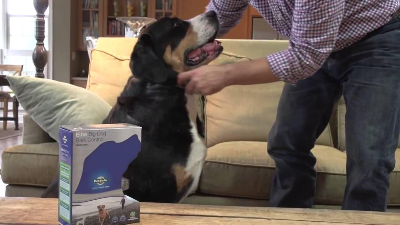 Интернет-магазин «четыре лапы» предлагает выгодно купить домики и. Royal canin 30 adult сухой корм для собак породы лабрадор ретривер 12 кг.