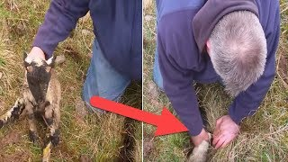 When He Heard Cries From A Crack In The Ground, This Man Reached In And Found A this Creature