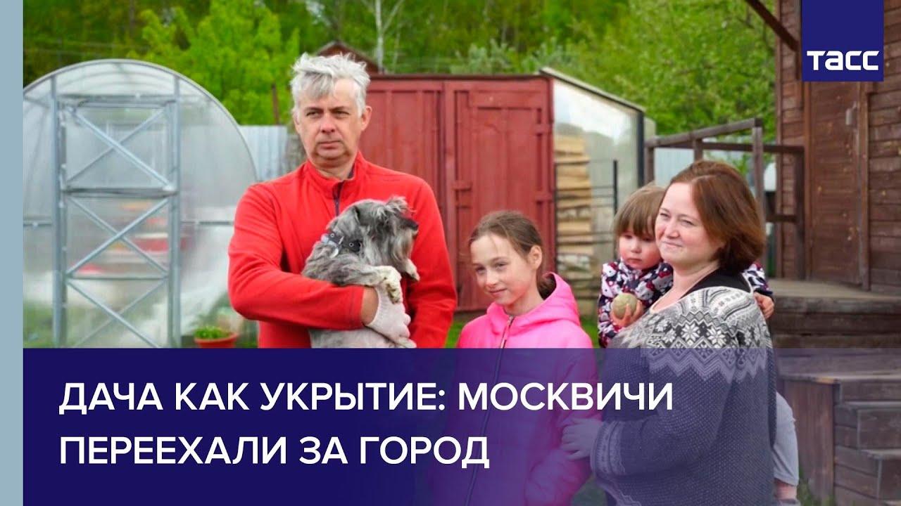 Дача как укрытие: москвичи переехали за город