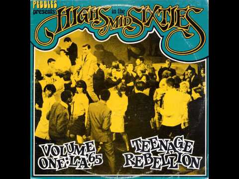 Various Artists Highs In The Mid Sixties Vol 01   L A  '65, Teenage Rebellion 1983