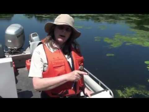 Aquatic Vegetation Sampling Protocol - 2013