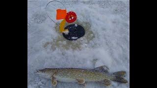 Первая рыбалка на реке в этом году Много поклёвок щуки
