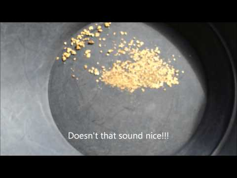 Finding Gold in Idaho