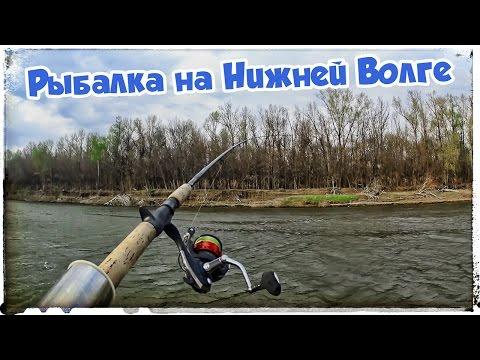 База отдыха в Астрахани. Охота и рыбалка на Нижней Волге
