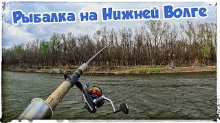 Рыбалка весной. Апрель 2017. Нижняя Волга