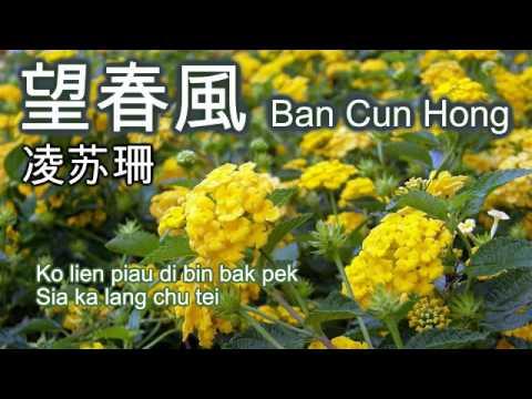 望春風 Ban Chun Hong by Lin Su San [凌苏珊]