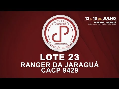 LOTE 23 (CACP 9429)