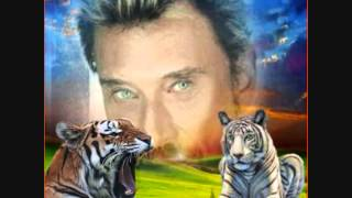 VIDEO JOHNNY HALLYDAY entre nous