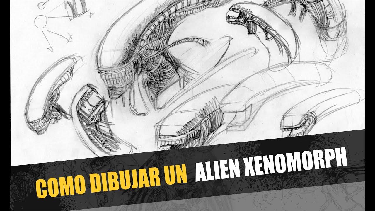 Como dibujar un alien xenomorph