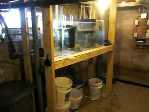 Basement Sump 6 Years Ago 75 Gallon Basement Sump With