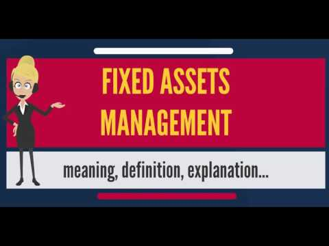 What is FIXED ASSETS MANAGEMENT? What does FIXED ASSETS MANAGEMENT mean?