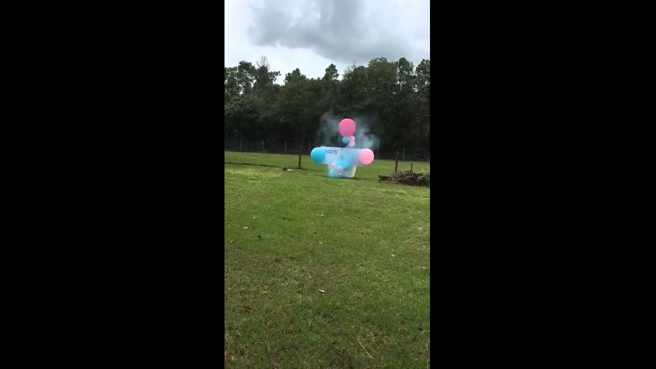Gender Reveal With A Bow And Balloons Youtube