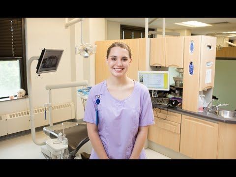 University of Bridgeport - Online On Purpose | Dental Hygiene