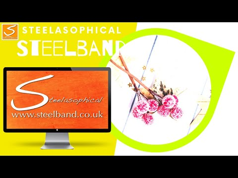 recommended-wedding-venues-in-the-uk-|-steelasophical-steel-band-dj