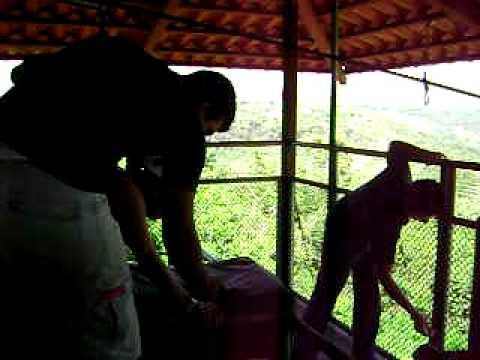 Turubari Costa Rica cable sensacional