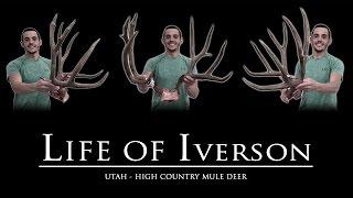 2016 Utah Archery Mule Deer - Life of Iverson
