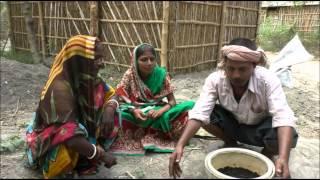 Sack Farming Bhojpuri