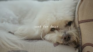 gnash - song for daisy (audio)
