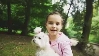 Мальтійська болонка - Даринка Семів (сюжет до програми ТЕМА: Улюблені породи собак)