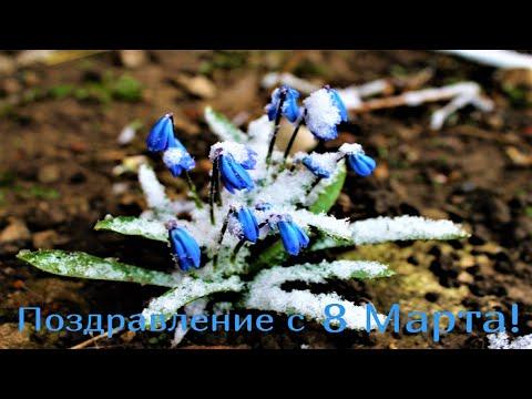 8 марта: видео-поздравление с 8 Марта, красивая музыкальная видео-открытка на 8 Марта