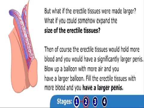 Best Penis Enlargement Pills     Vimax Review