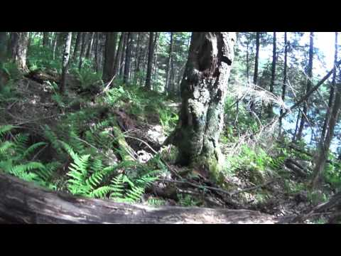 Following ATV Trail from Lower to Upper Beech Ridge Pond in Five Ponds Wilderness, Adirondack Park
