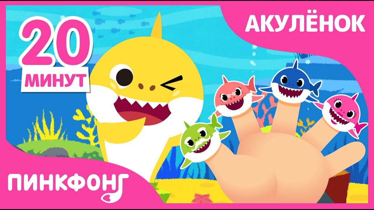 Хиты Акулёнок   +Сборник   Пойте с Акулёнком   Песни про Животных   Пинкфонг Песни для Детей