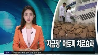 MBC 뉴스방송! 한방 고유처방 '자금정'…
