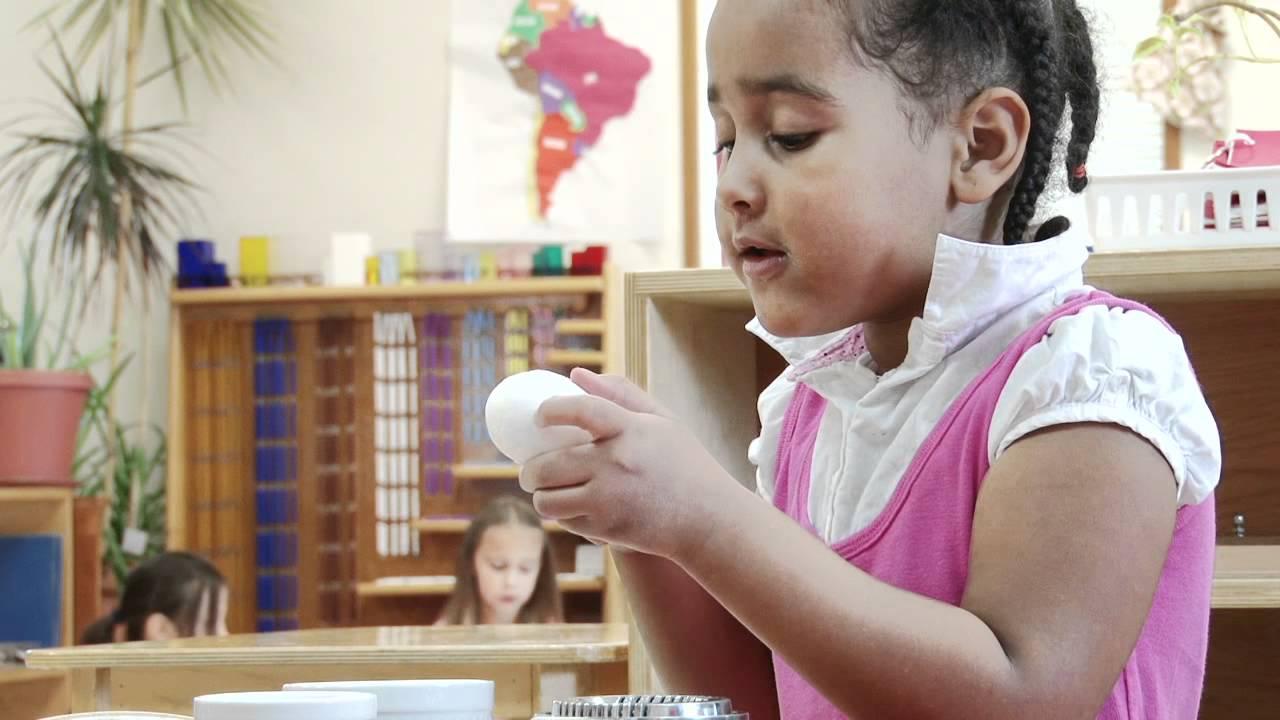 Family Star Montessori - The Child