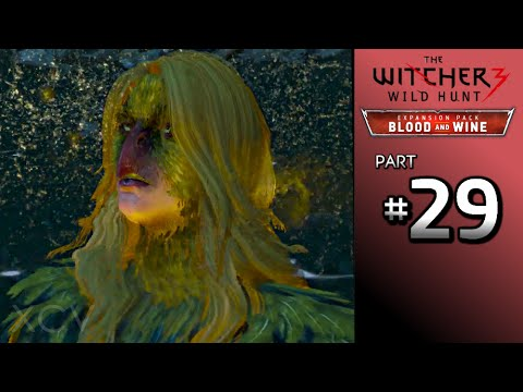 THE WITCHER 3 Blood and Wine Walkthrough Part 29 · Secondary Quest: The Warble of a Smitten Knight
